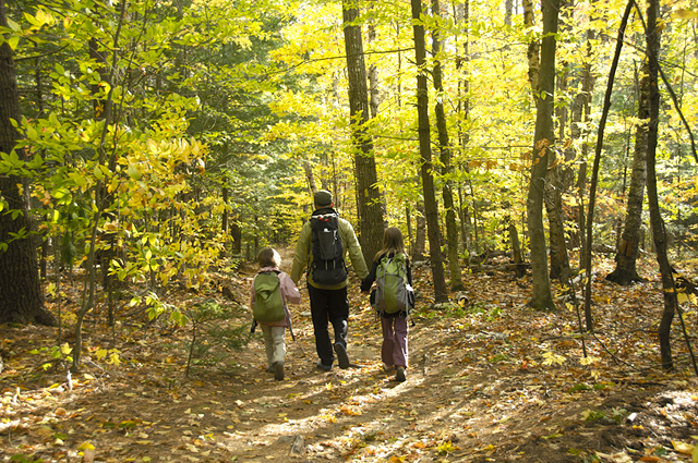 Damien Tougas and his family walking into the woods