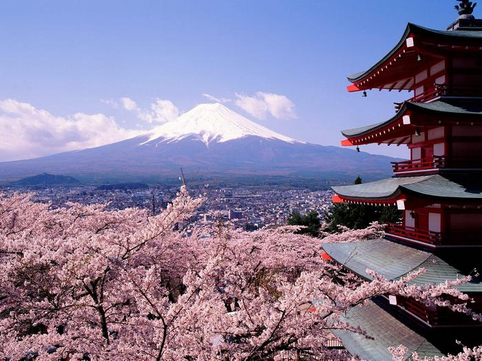 Fuji mountain and cherry blossom, Japan