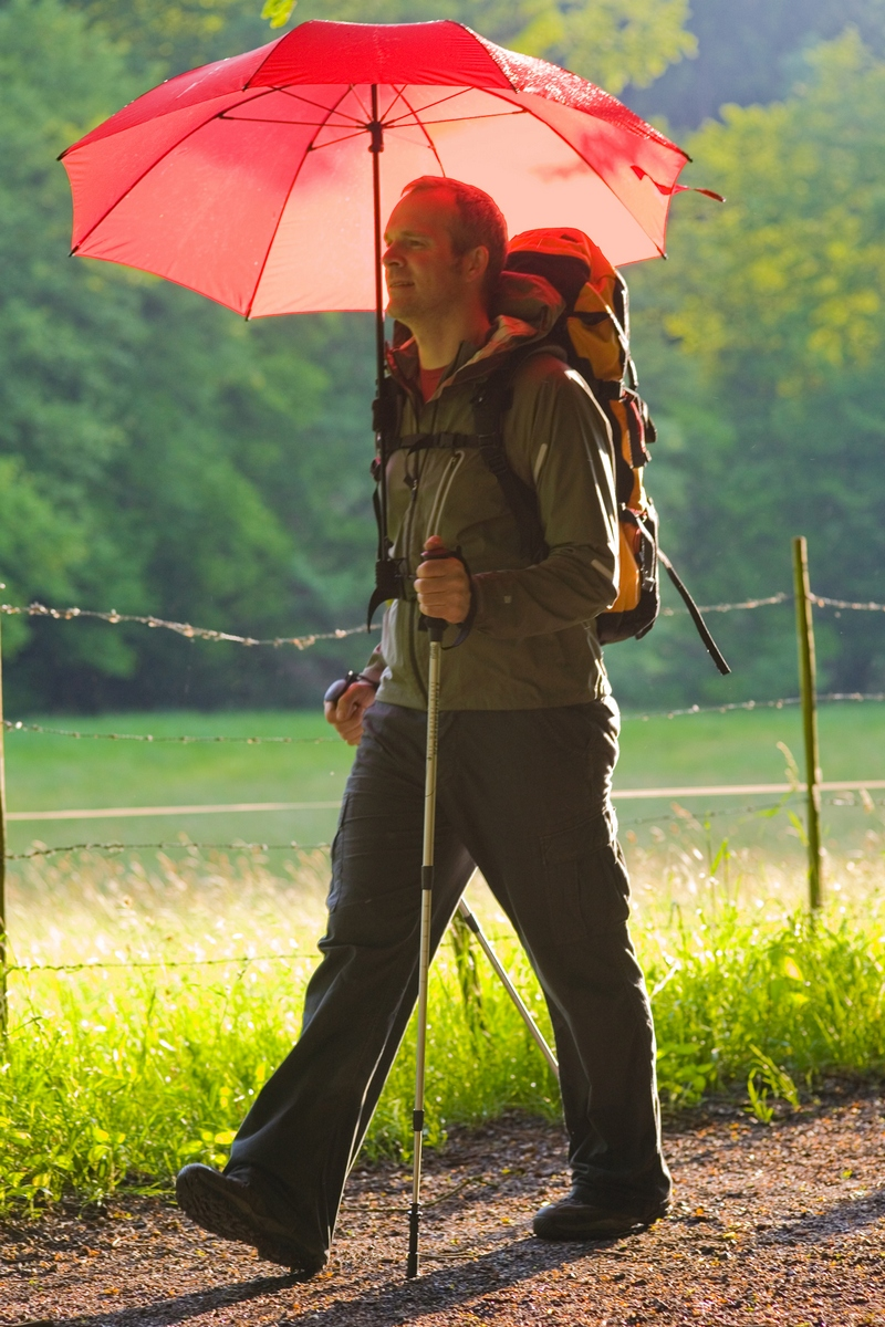 10 Reasons to Go for a Walk Right Now