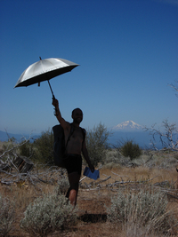10 Reasons to Go Hiking and Backpacking with an Umbrella