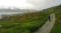 The Rallaarvegen is a wide scenic trail that takes you some of Norway's best scenery. You can bike it for $80!