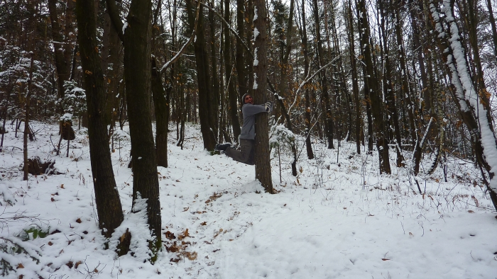 Hanging onto a tree in the snow