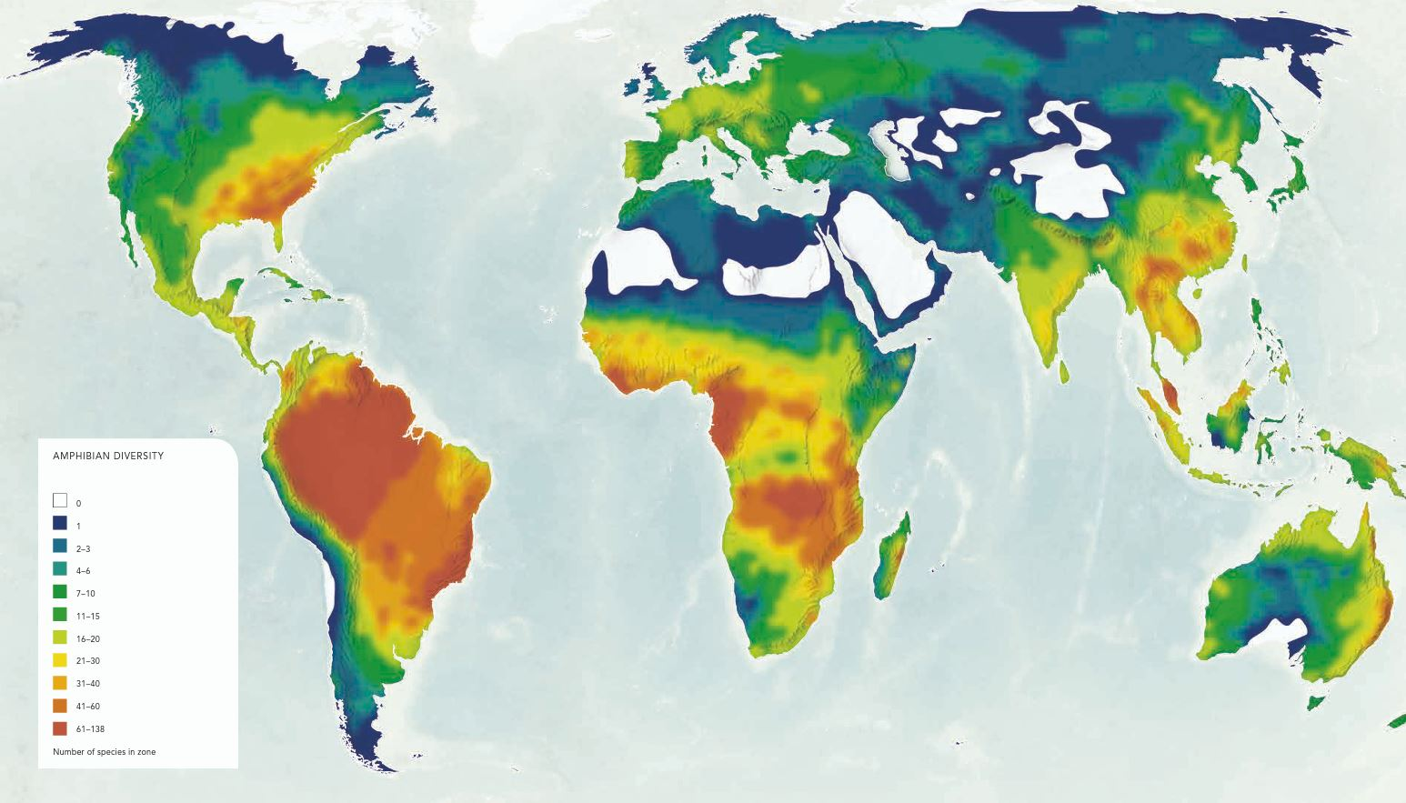 Amphibian Diversity World Map