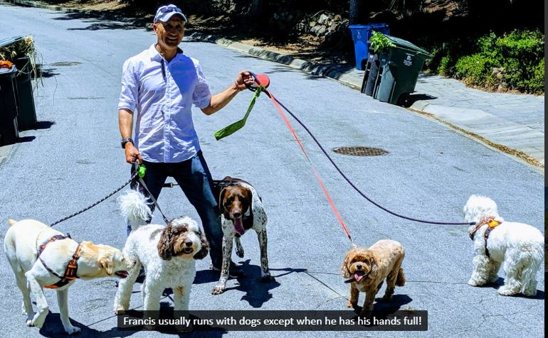 How To Make $60,000 Per Year As A Rover or Wag Dog Sitter | Work